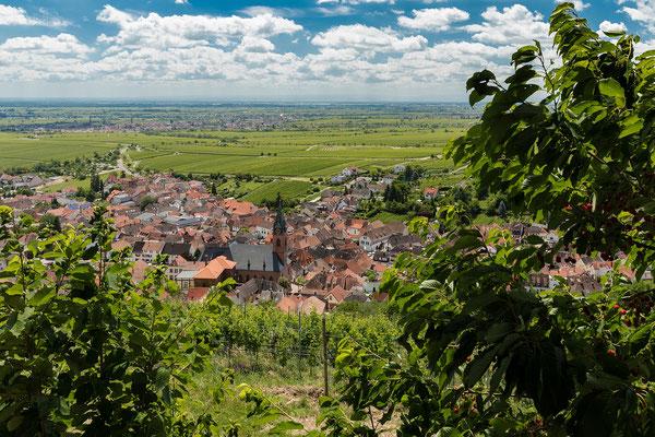 Ausblick auf Sankt Martin