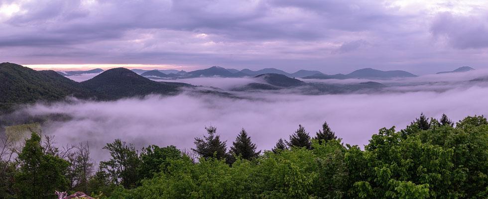 Nebelmorgen auf der Burgruine Lindelbrunn