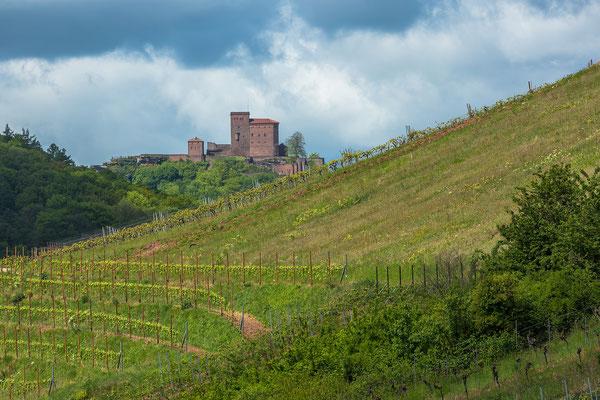 Wein und Burg