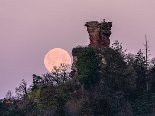 Vollmonduntergang hinter der Ruine Drachenfels