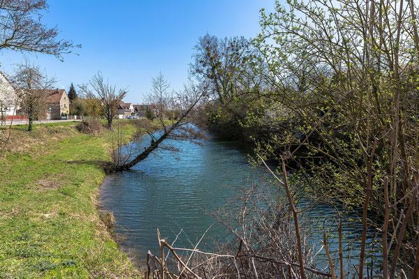 Altrheinarm bei Neuburg