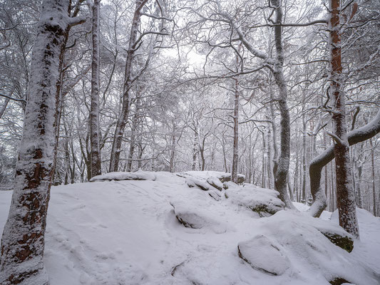Winter auf der Kalmit