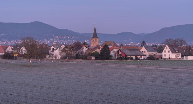 Wintermorgen bei Lachen-Speyerdorf