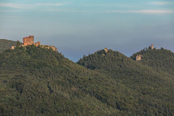 Die Burgen Trifels, Anebos und Scharfenberg (Münz)