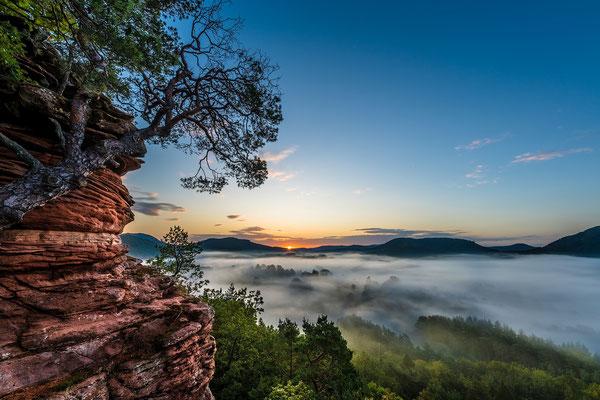 Sonnenaufgang auf dem Sprinzelfelsen
