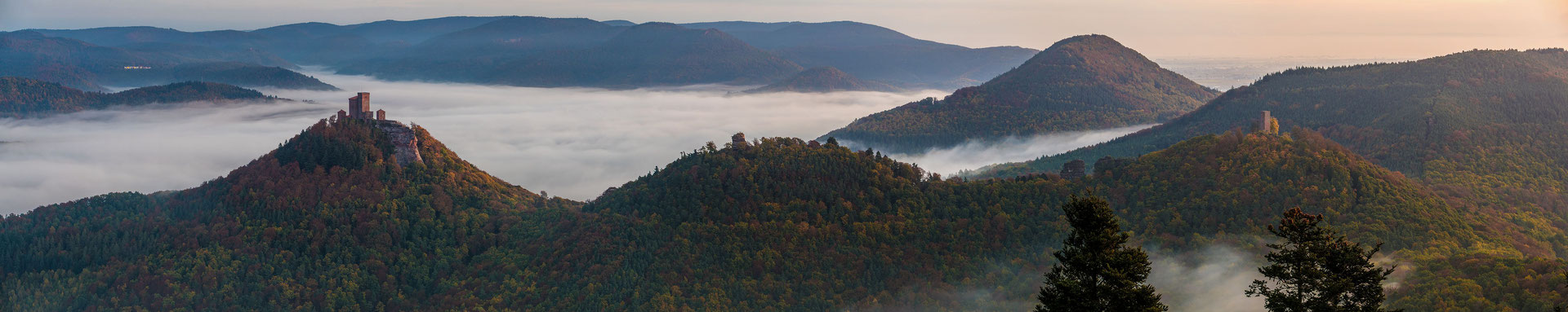 Trifels, Anebos und Münz an einem Herbstmorgen