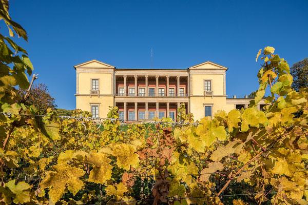 Herbst an der Villa Ludwigshöhe