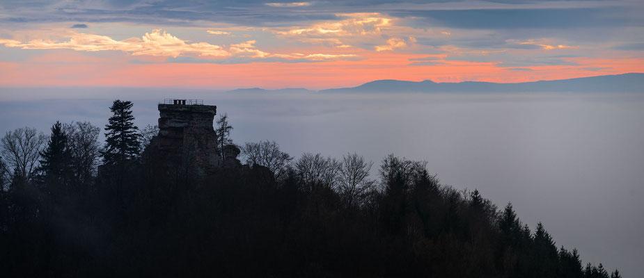 Blick zur Hohenburg und weit in die Vogesen
