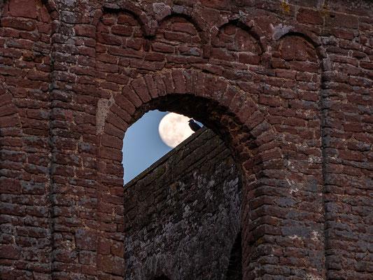 Monduntergang in der Klosterruine Limburg