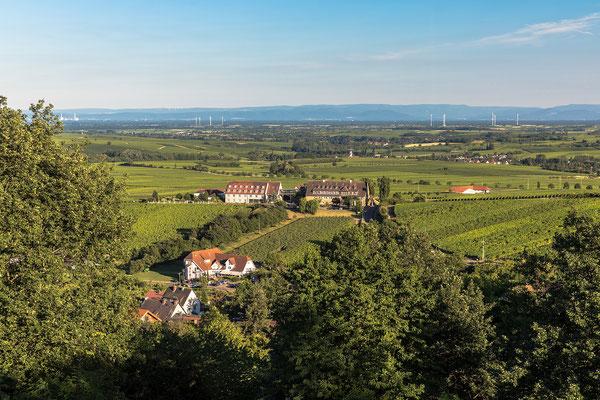 Blick auf den Leinsweiler Hof und den Schwarzwald