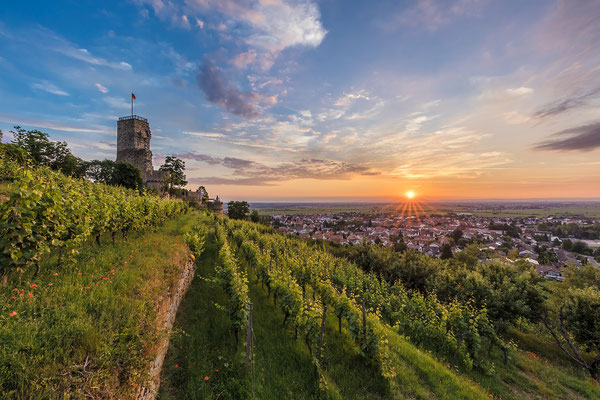 Sonnenaufgang auf der Wachtenburg