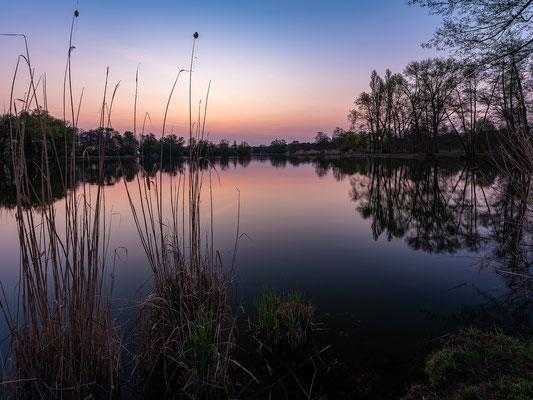 Sonnenaufgang am Niederwiesenweiher