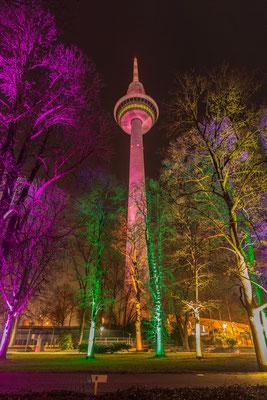 Luisenpark Mannheim in der Nacht