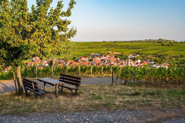 Blick auf Birkweiler