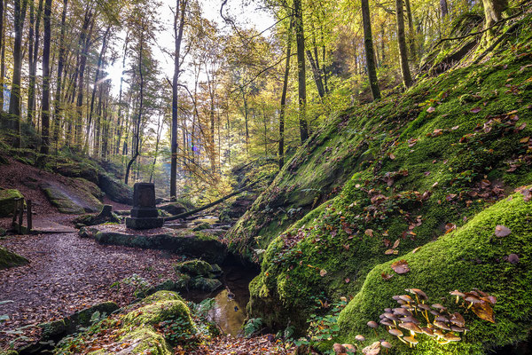 Herbststimmung in der Karlstalschlucht