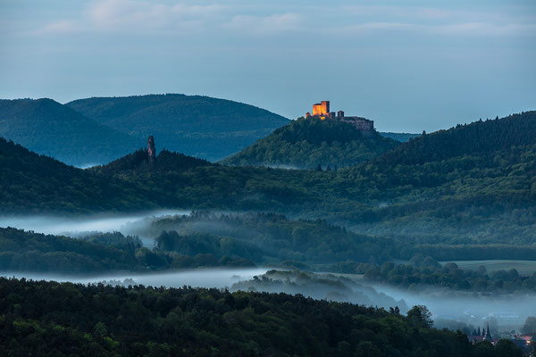 Nebel am Trifels