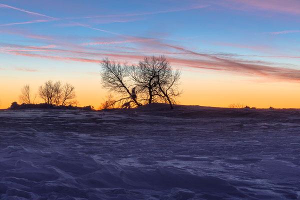 Winterstimmung im Dämmerlicht