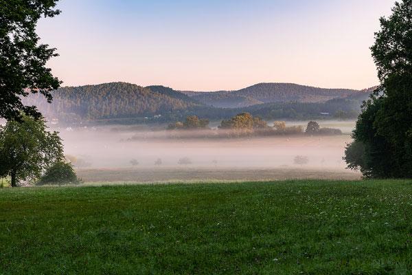 Nebelstimmung bei Busenberg