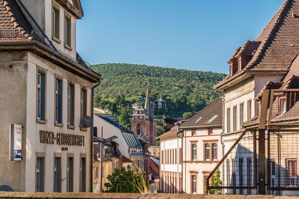 Stiftskirche Neustadt