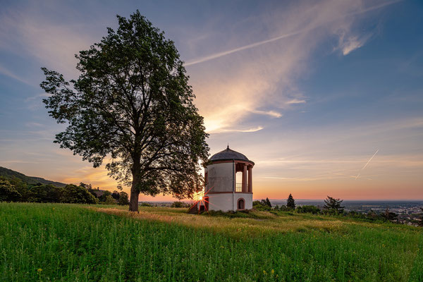 Sommermorgen über Neustadt