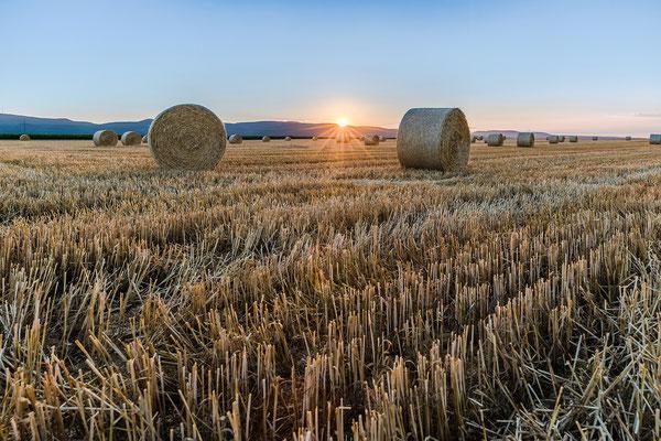 Sonnenuntergang mit Strohballen bei Hassloch