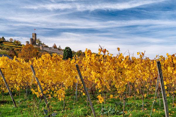 Herbstliche Wachtenburg