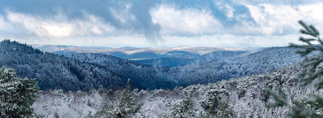 Winterlandschaft auf dem Taubenkopf bei Maikammer