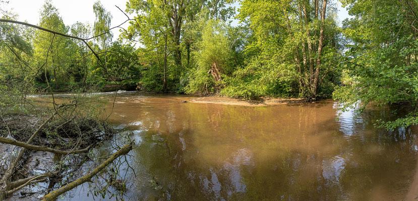 Der Fluss Lauter bei Scheibenhardt