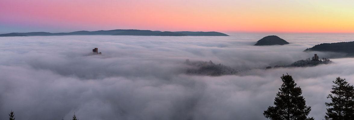 Nebelstimmung kurz vor Sonnenaufgang