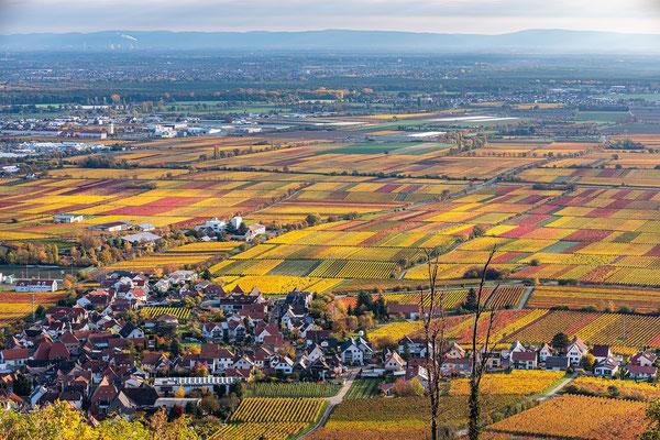 Herbstmorgen am Hambacher Schloss