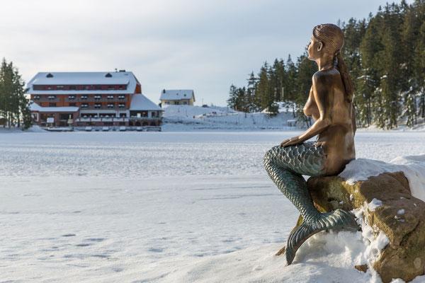 Seenixe bewacht den zugefrorenen Mummelsee