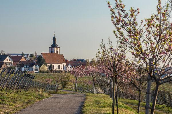 Frühling in Weyher