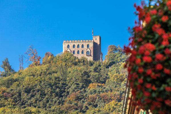 Blick aufs Hambacher Schloss von der Schlossstraße aus