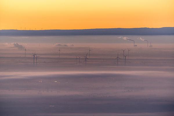 Früh Morgens auf der Kalmit