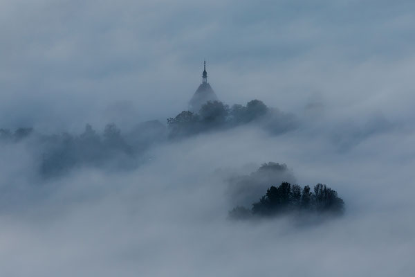 Dichter Nebel über dem Geilweilerhof