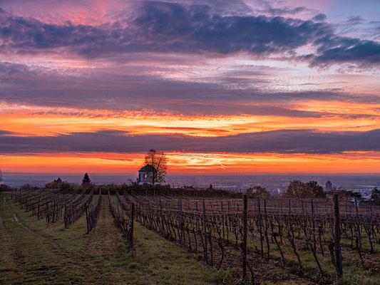 Sonnenaufgang oberhalb von Neustadt