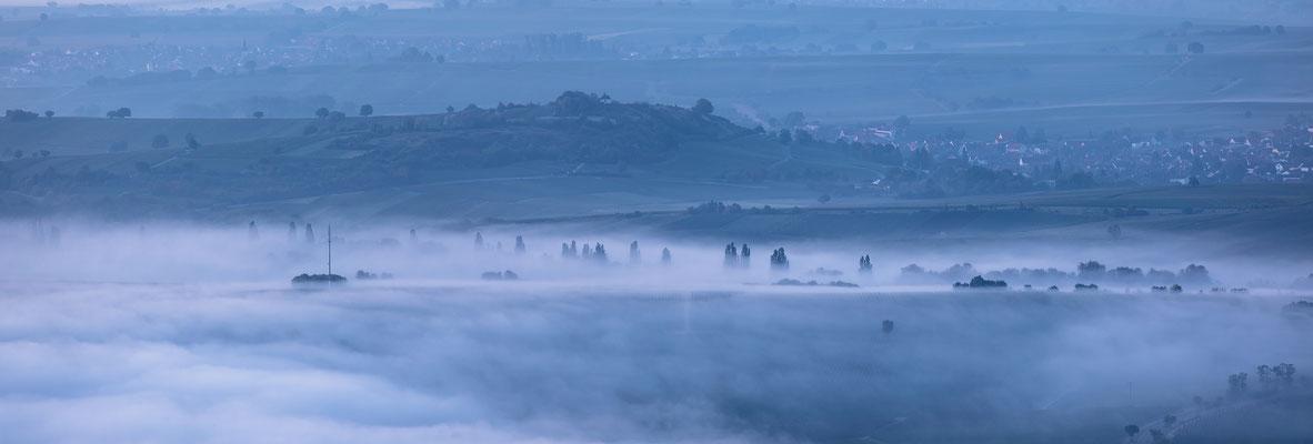 Kleine Kalmit im Nebel