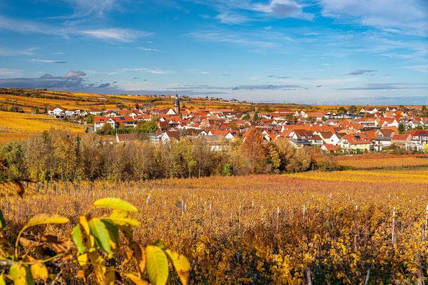 Kallstadt im Herbstkleid
