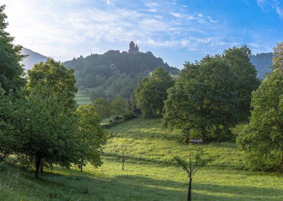 Blick auf Burg Berwartstein