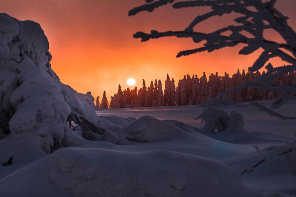 Sonnenaufgang an der Hornisgrinde