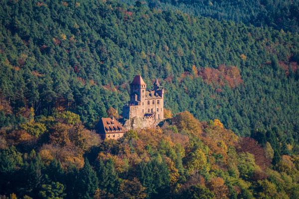 Schöne Aussicht auf die Burg Berwartstein