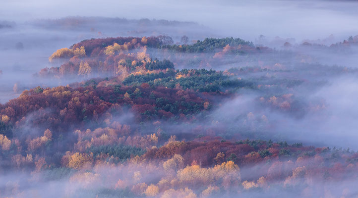 Nebelstimmung vor Sonnenaufgang