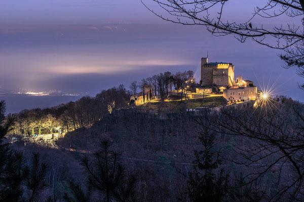 Nebelstimmung am Hambacher Schloss