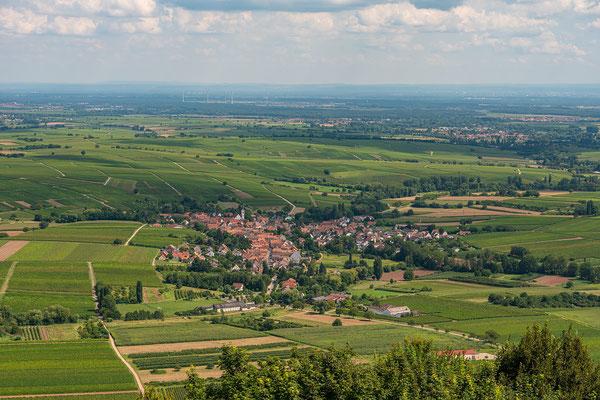 Ausblicke von der Madenburg in die Rheinebene