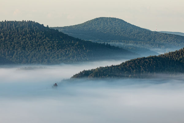 Burg Berwartstein im Nebel
