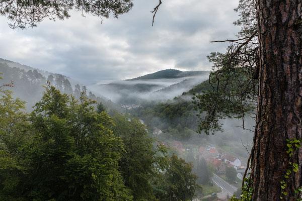 Morgennebel über der dem Ort Erfenstein