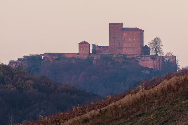 Burg Trifels im ersten frühen Morgenlicht
