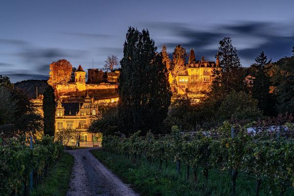 Haardter Schloss in der Blauen Stunde