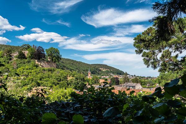 Blick auf Haardt und Burg Winzingen
