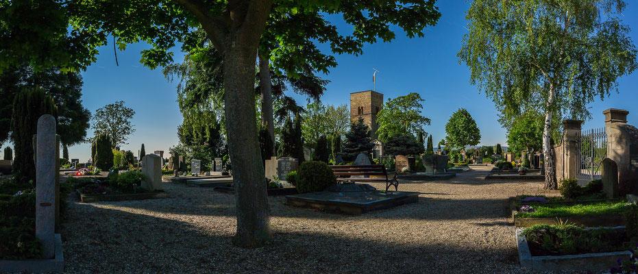 Vollmondstimmung auf dem Freinsheimer Friedhof